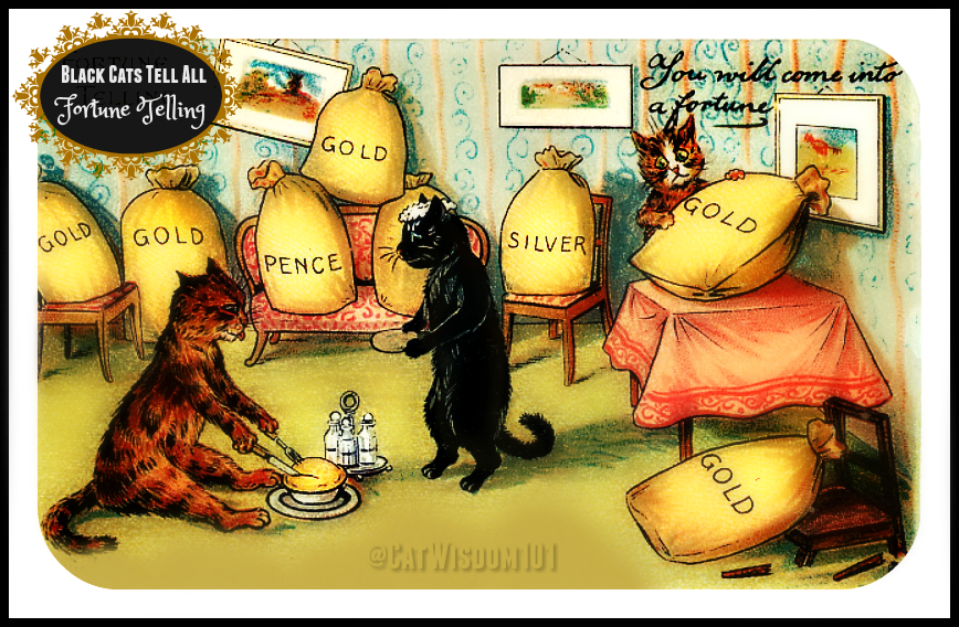 Black_cat_Fortune Telling _money