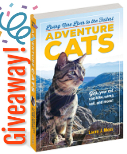 adventure_cats_book_review_giveaway