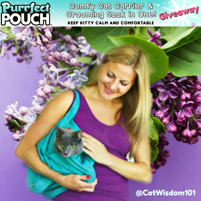 purrfect_pouch_giveaway