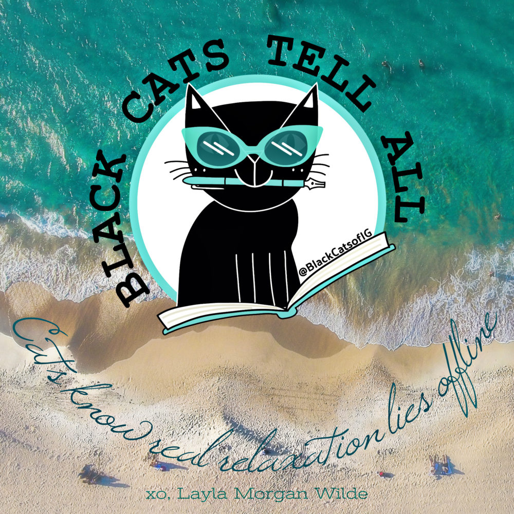 beach_cat_quote_offline
