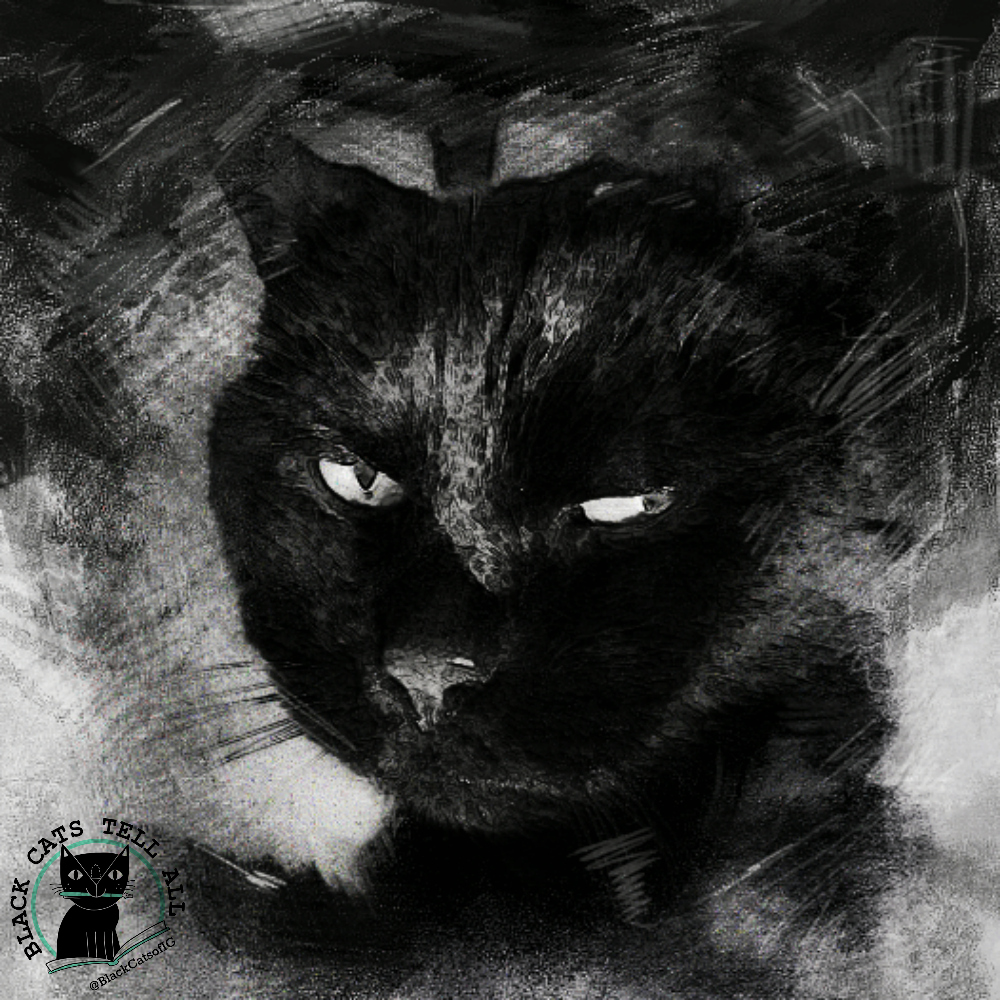 clyde_bw_art_cat