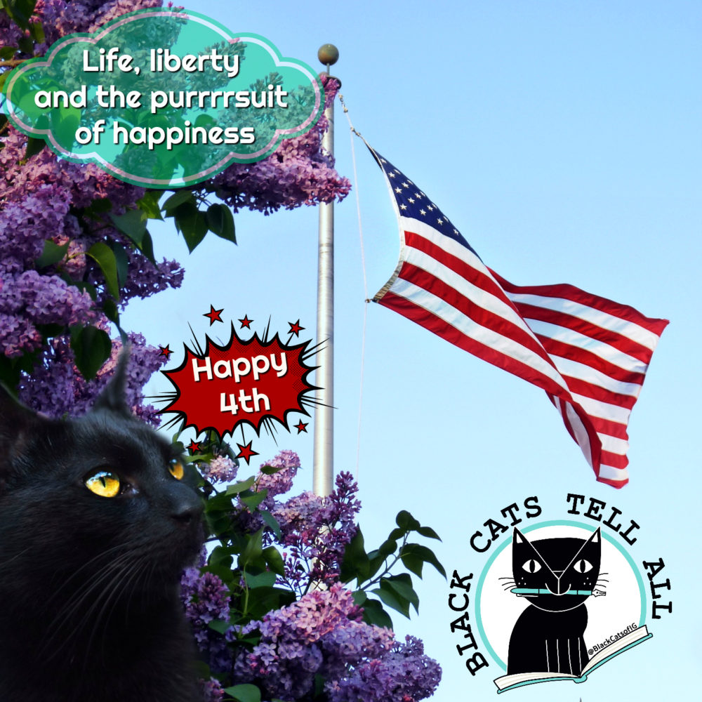 life, liberty purrsuit of happiness