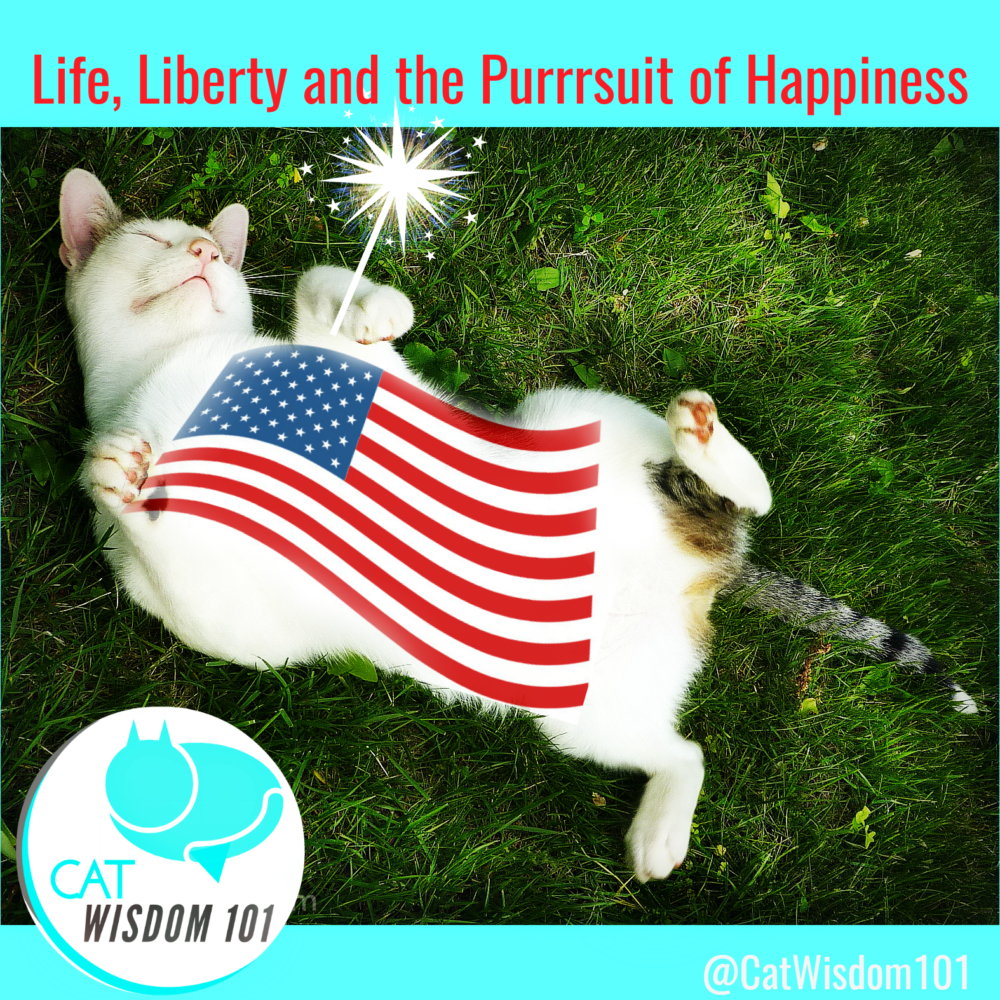 live, liberty pursuit happiness