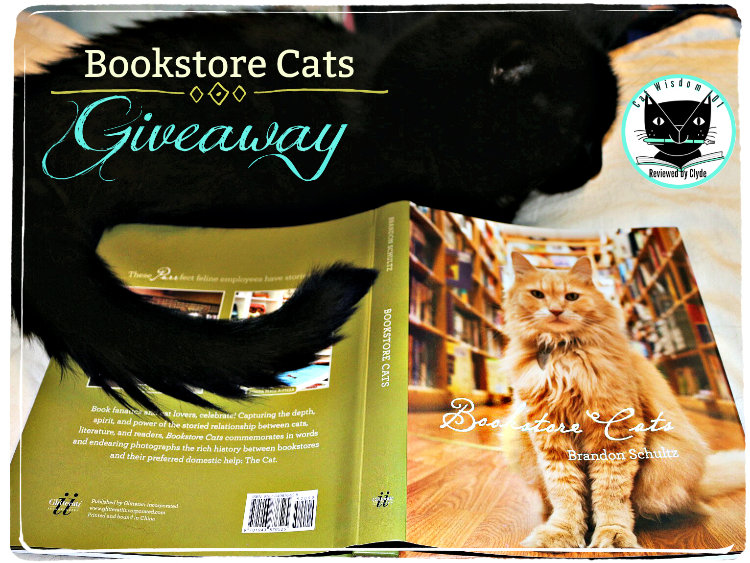 Bookstore Cats_giveaway