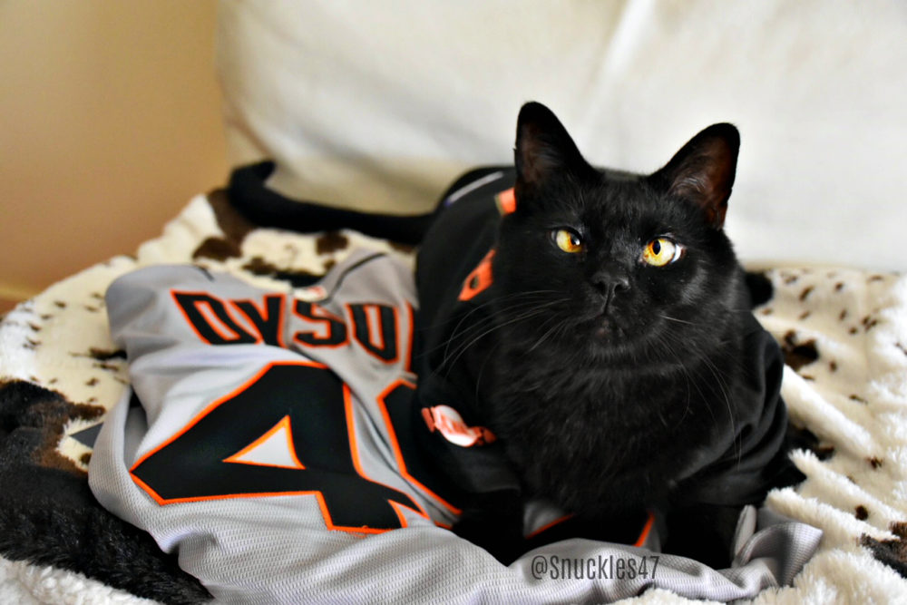 Snuckles47_jersey Q & A With SF Giants Sam Dyson and His Lucky Black Cat Snuckles