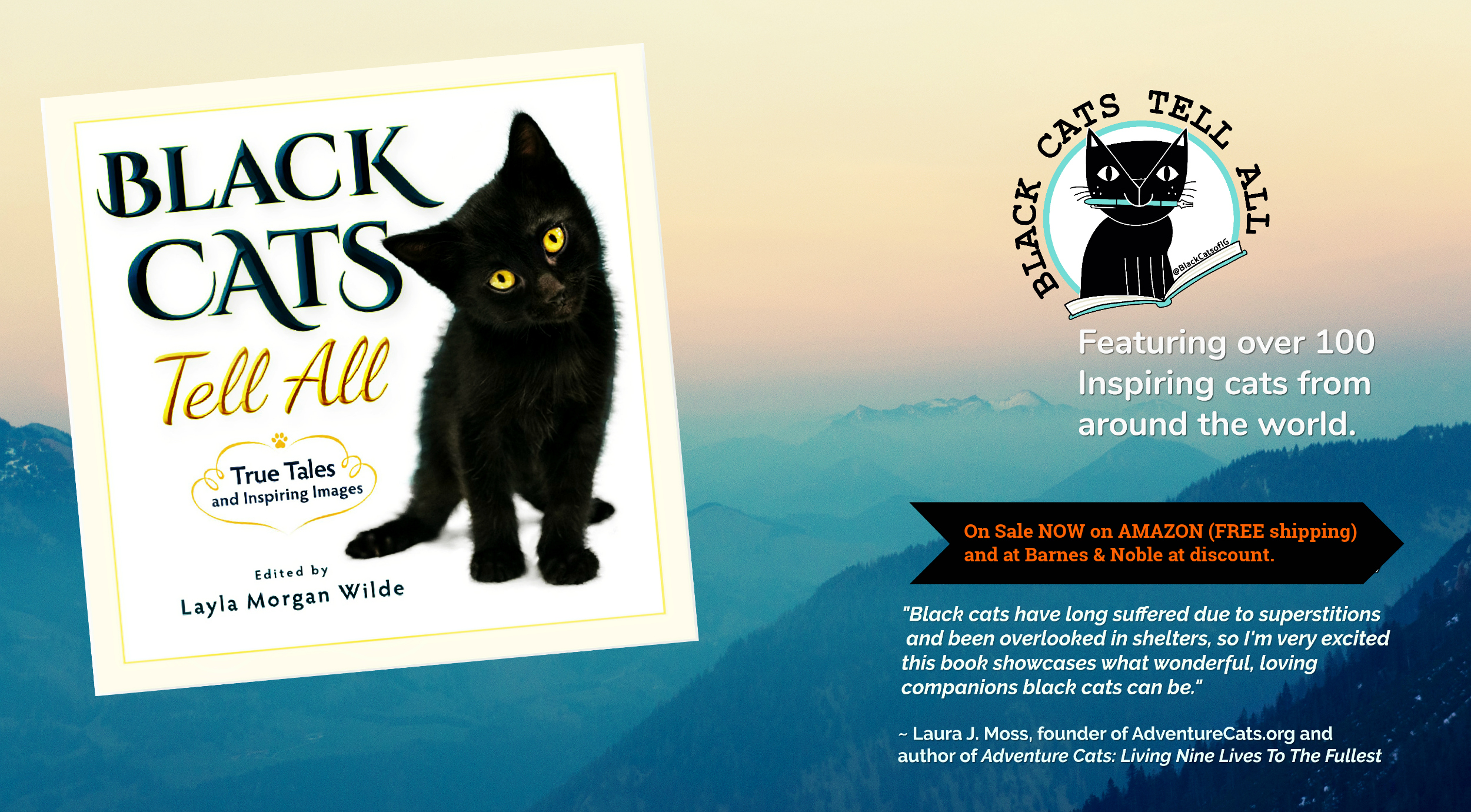 Black Cats Tell All True Tales and Inspiring Images_header