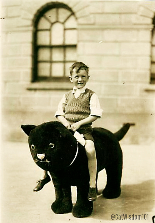 giant_black_cat_toy_boy