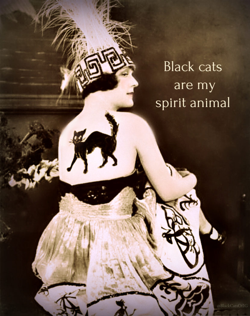 cats your Halloween spirit animal