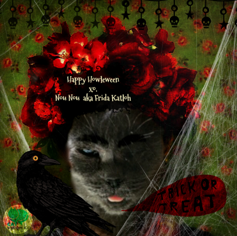 halloween_cat_flower-crown