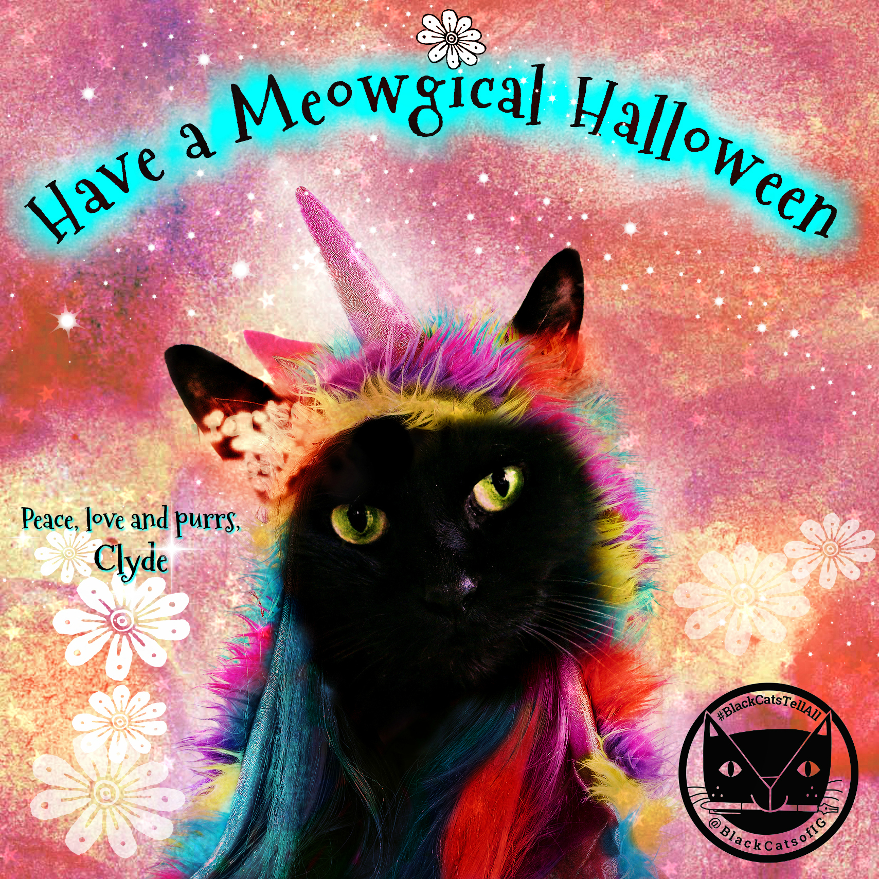 unicorn_cat_Meowgical_halloween