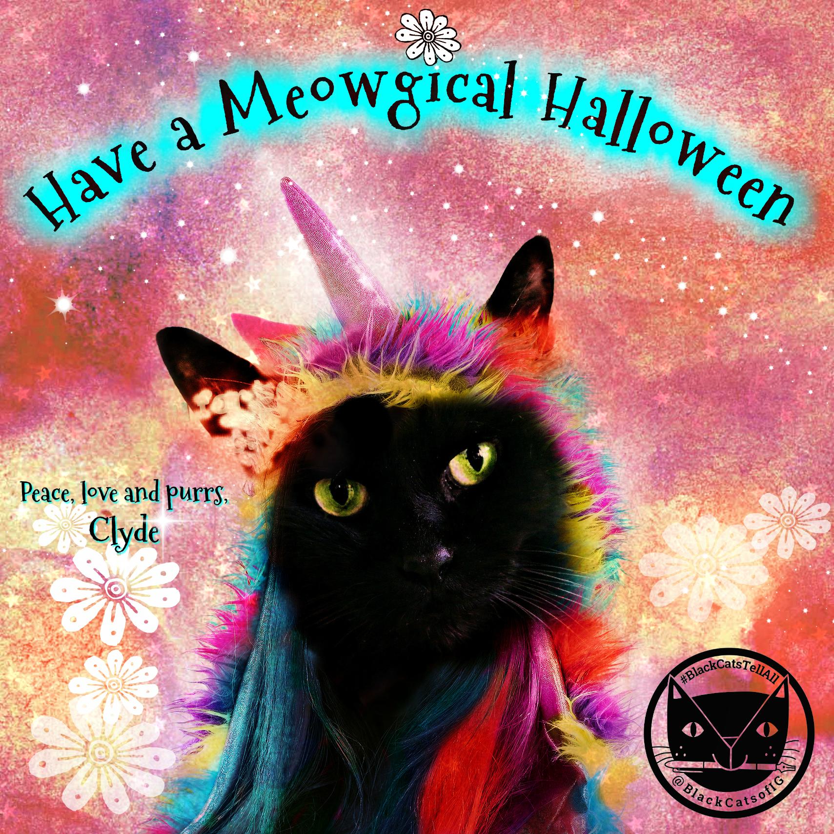 unicorn_cat_Meowgical_halloween