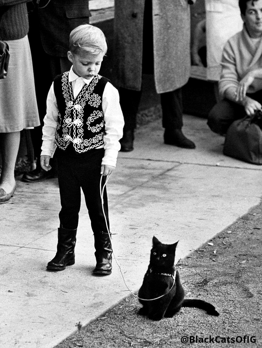 vintage_BW_boy_black_cat