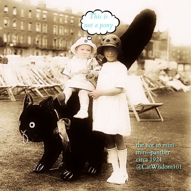 vintage_cat_giant_children Odd Cats Bring Smiles On World Smile Day & Other Odd Holidays