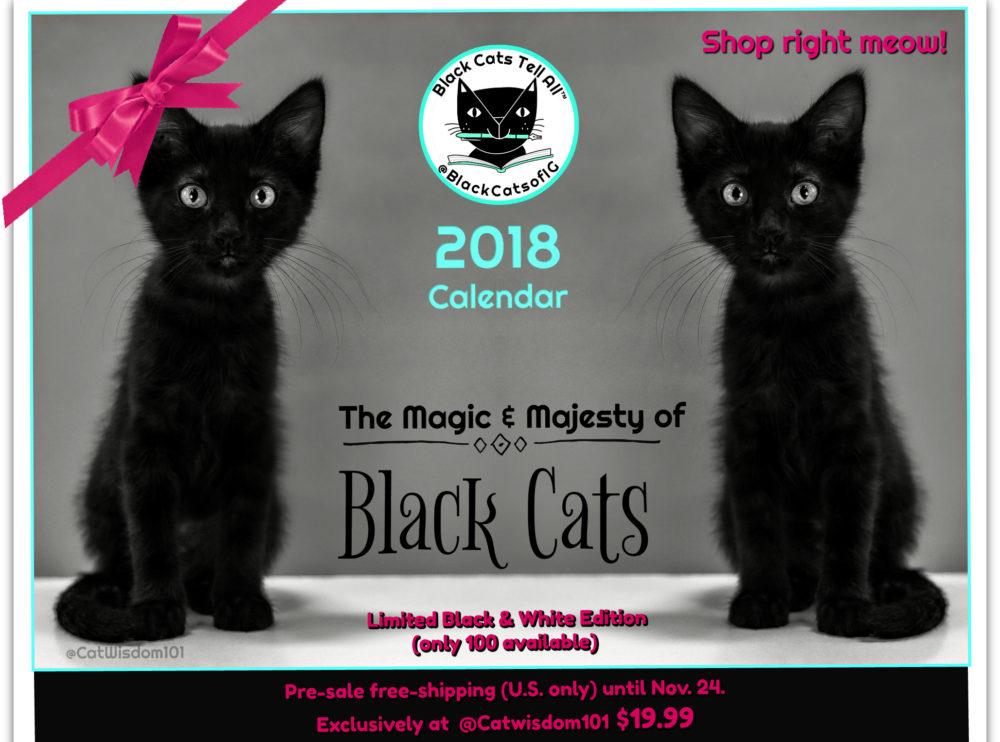 Black Cats Tell All 2018 Calendar,  Best Cat Poem & Horst The Hero From Germany