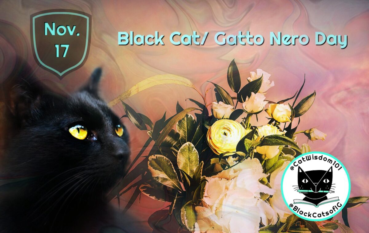 Zo, Best Friends, Black Cat Day Gatto Nero