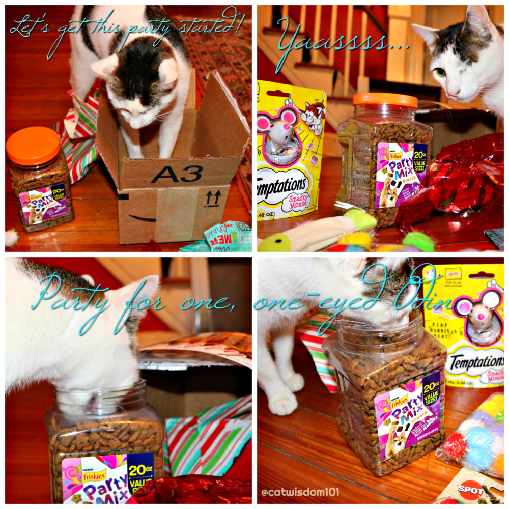 Party_mix_friskies_Temptations