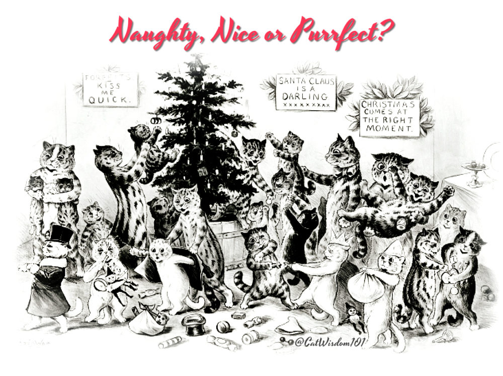 Christmas-cats-naughty-nice