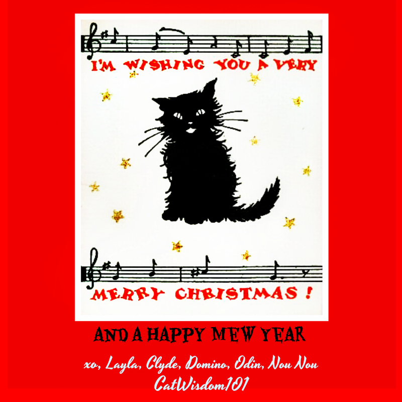 black_cat-christmas-cards-vintage