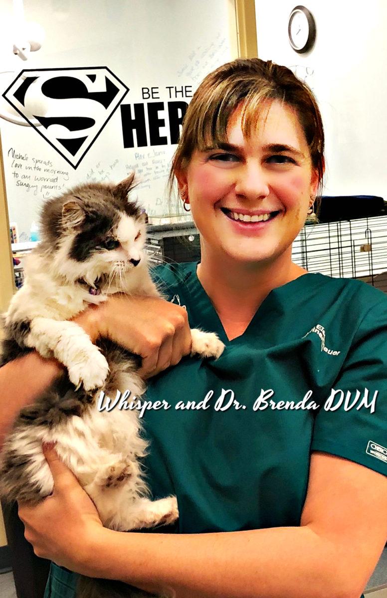 Dr. Brenda DVM