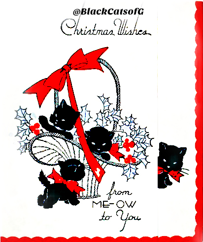 christmas_black_cat