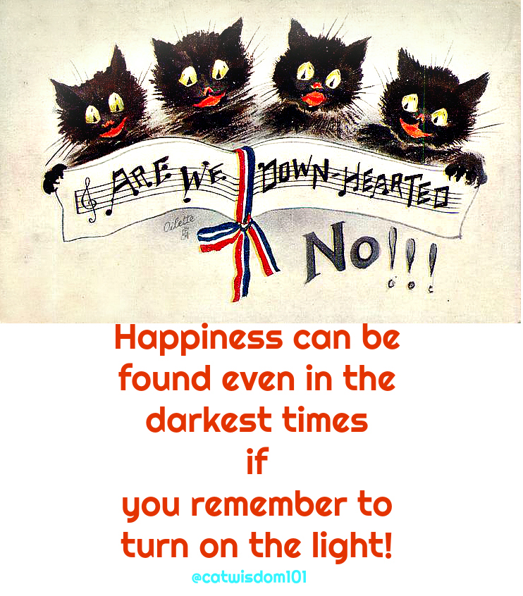 downhearted_cats_happiness