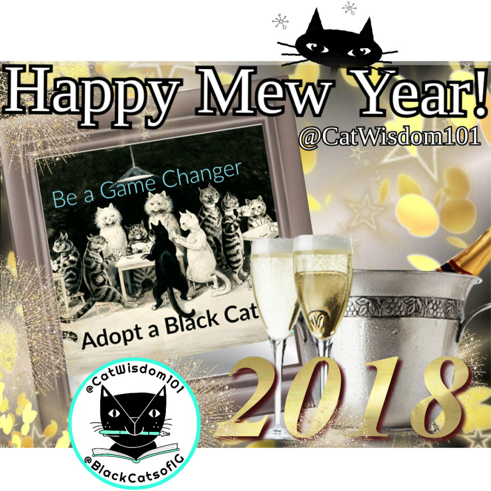 happy-2018_catwisdom101 100 Years of New Year's Eve Cheer With Cats
