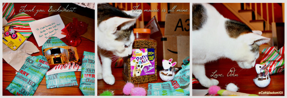 secret_santa_temptations_cat-treats