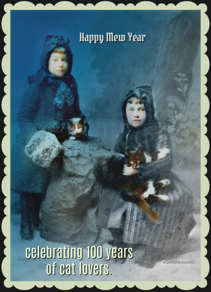 vintage_winter_new_year_cats-girls