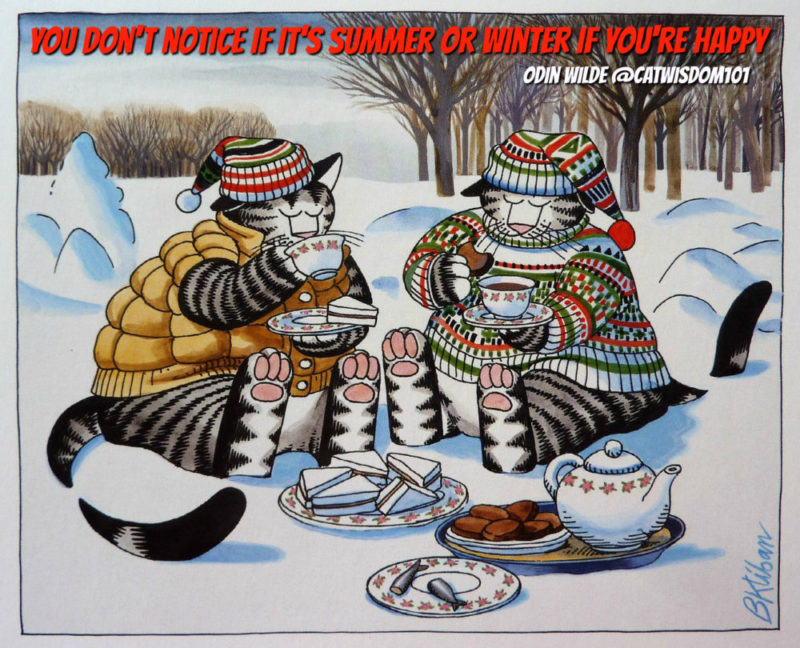 cats_winter-quote