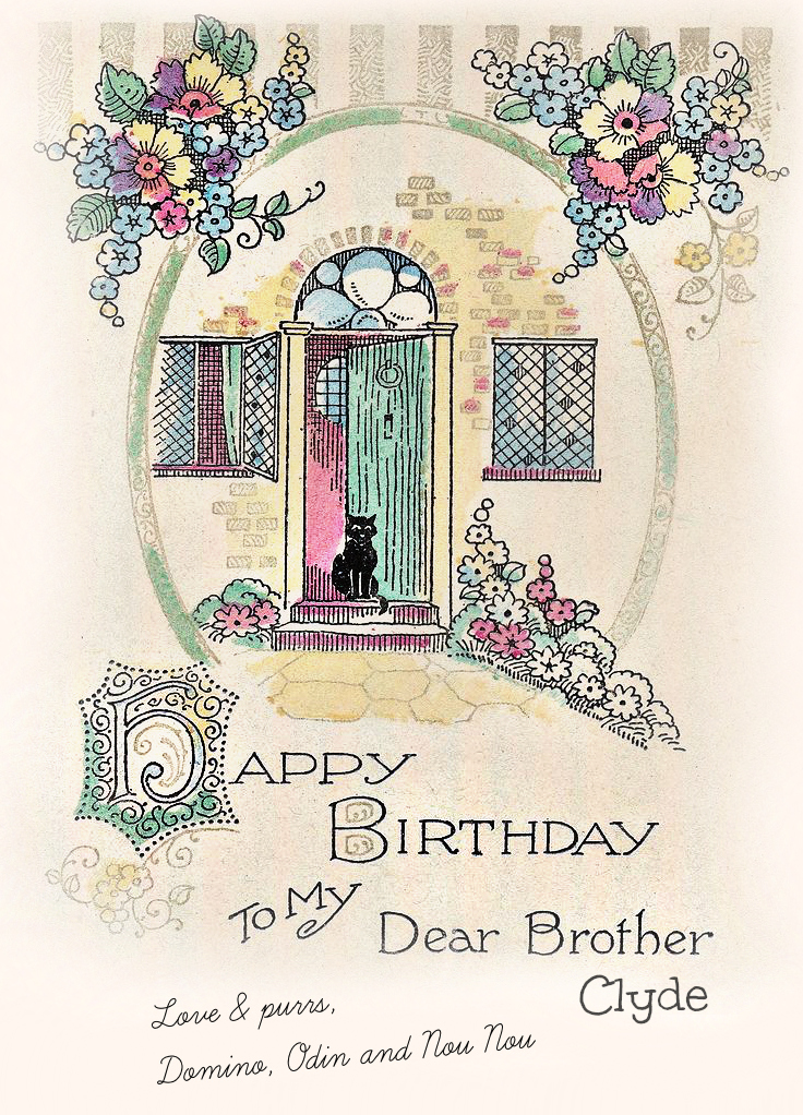 vintage_cat_wisdom_birthday