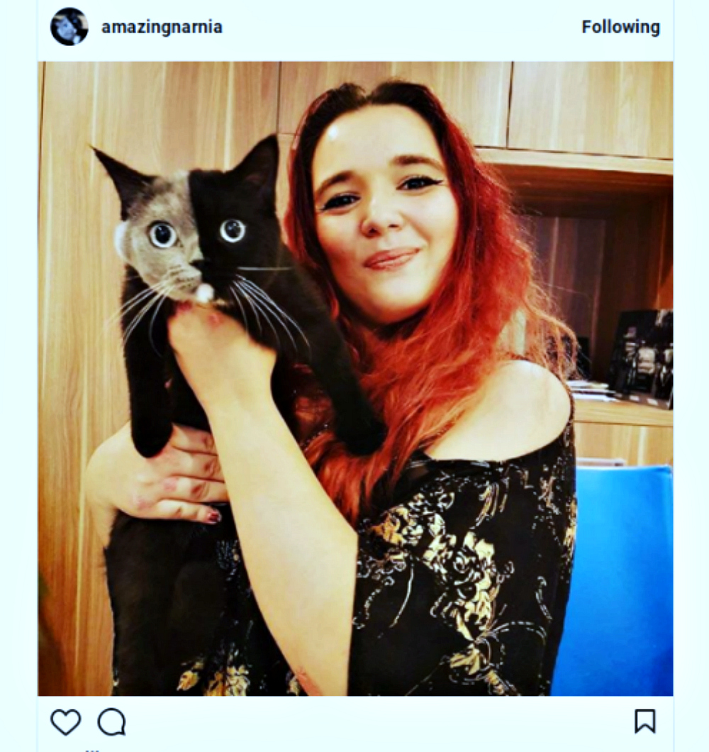 Narnia_cat_delagrace