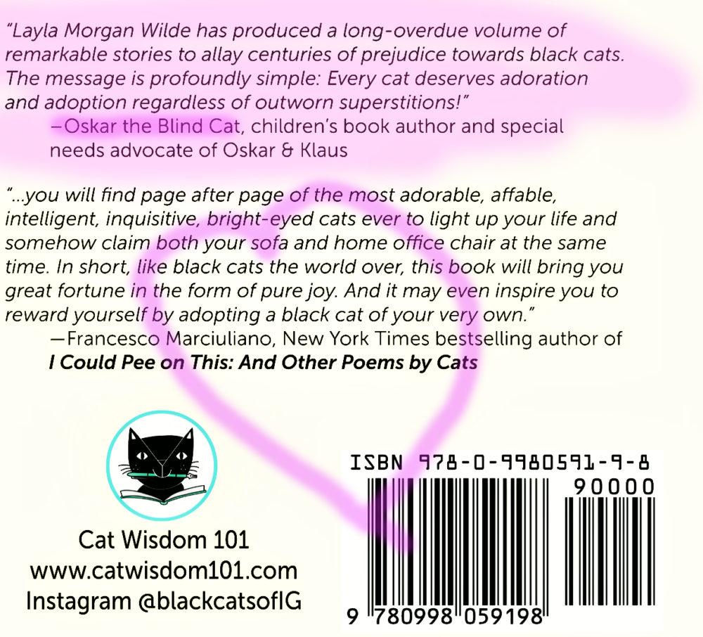 blackcatstellall_cover_Oskar_blind_cat
