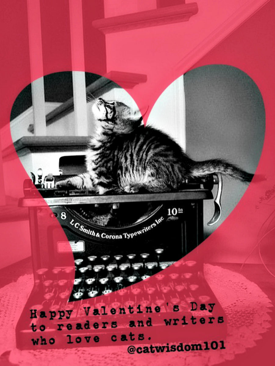 cat-lovers-writers_valentine_typewriter