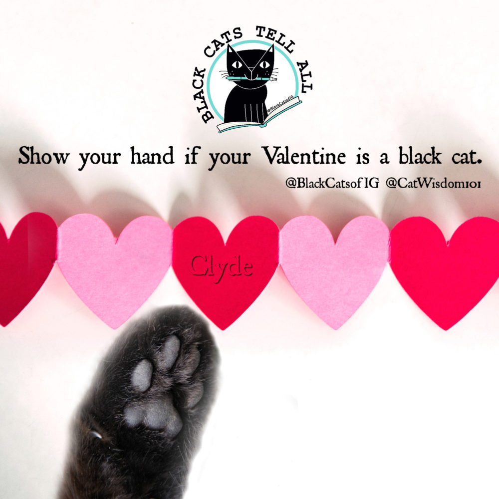 valentine_blackcatstellall-red_hearts