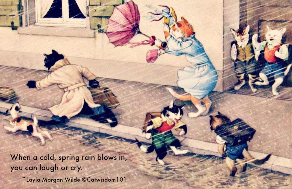 cats_Haiku_spring_rain-storm