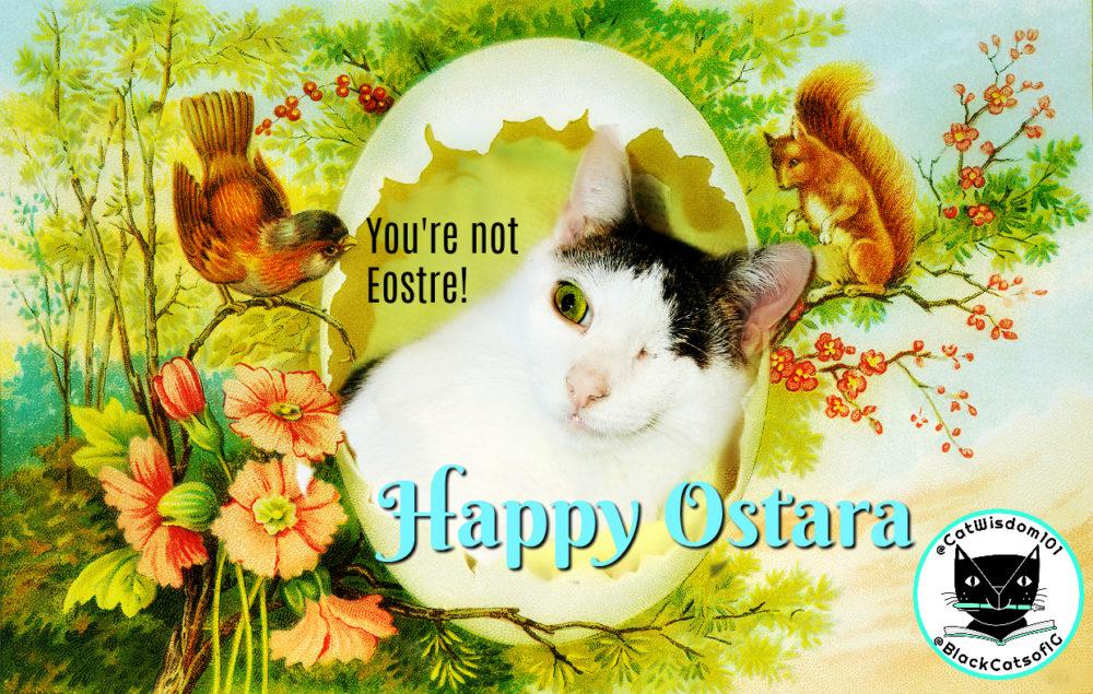 vintage_EOSTRE_CAT_spring-ostara