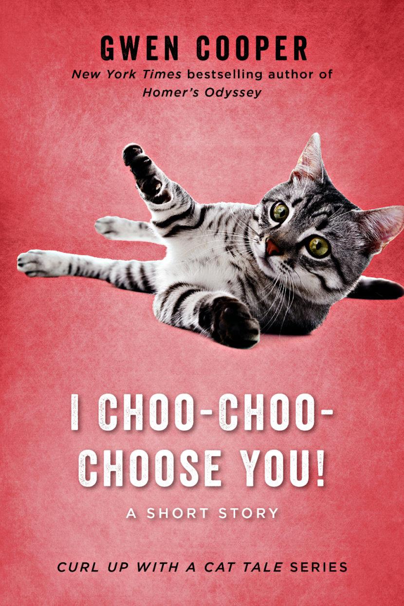 IChoo-Choo-ChooseYou_Ebook_Cover
