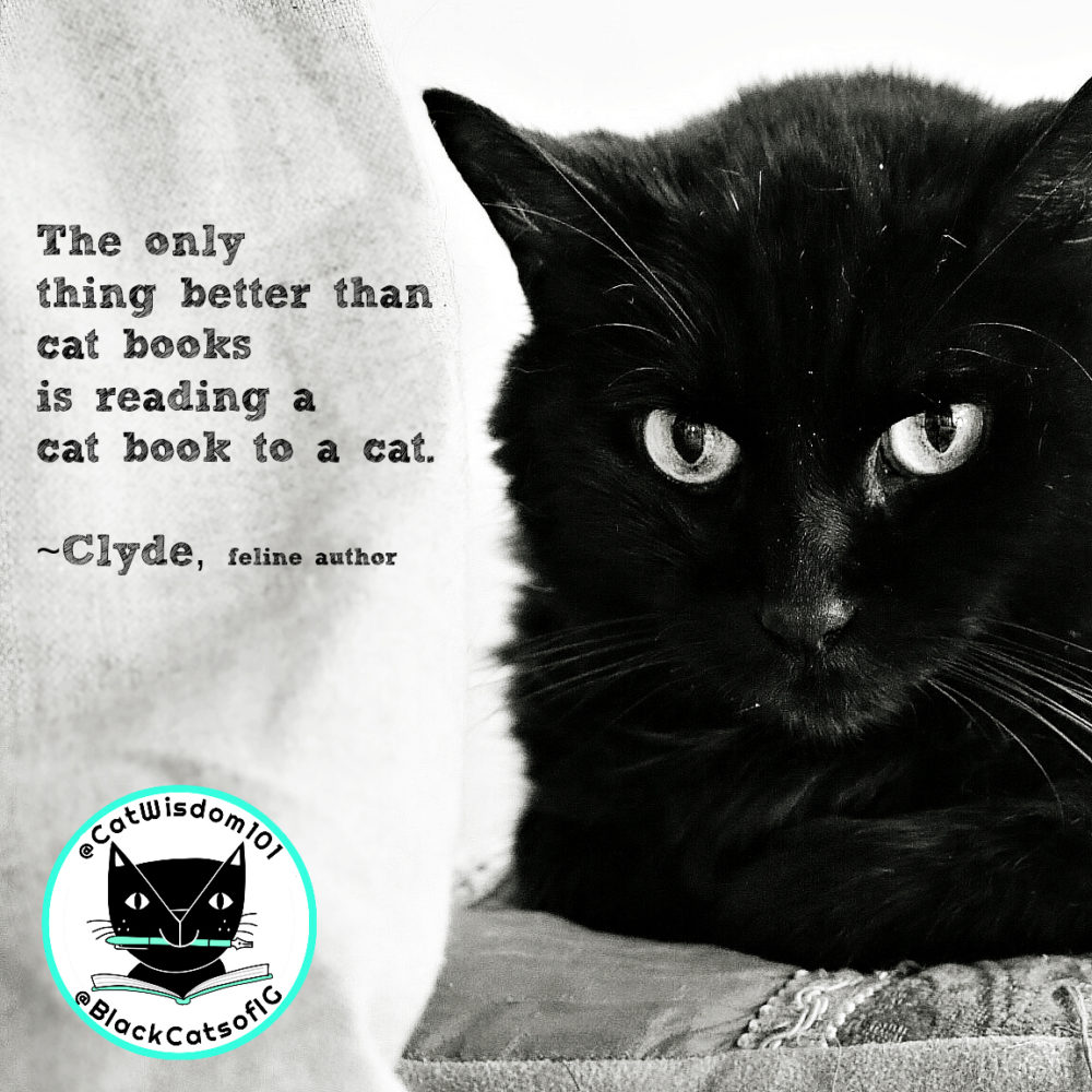 clyde_cat_quotes