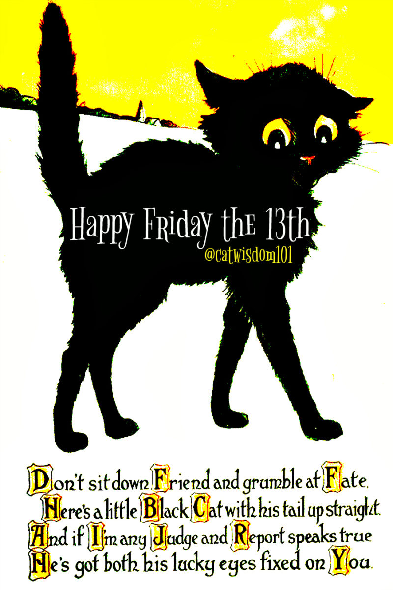lucky_cat_friday_13th_quote
