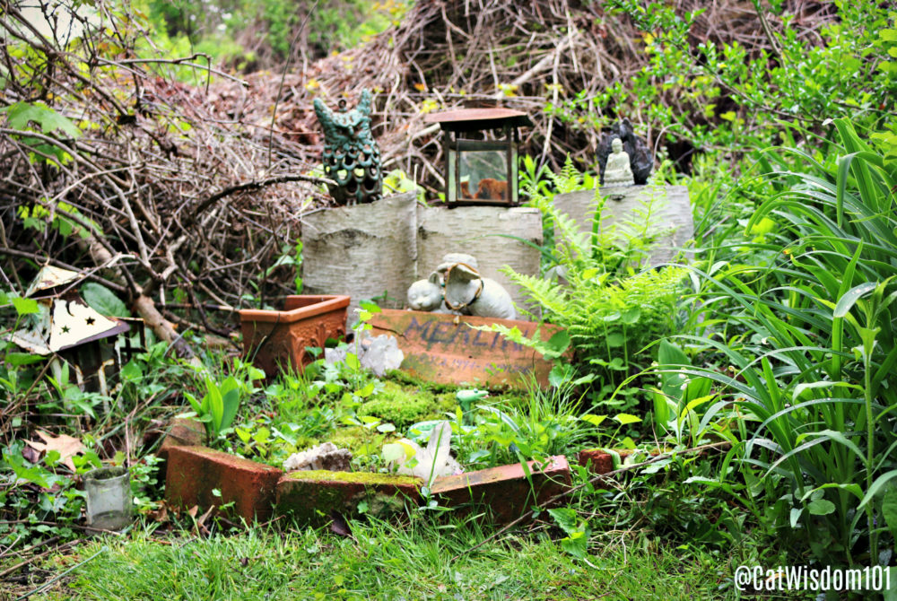 CatWisdom101_merlin_cat_cemetery_grave
