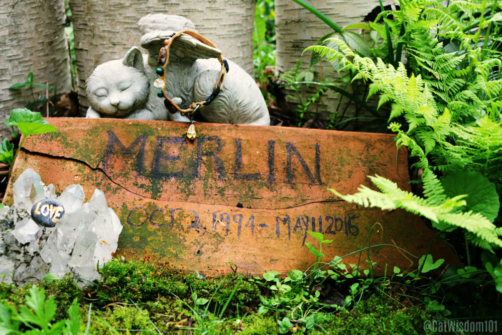 Merlin_cat_grave_memorial
