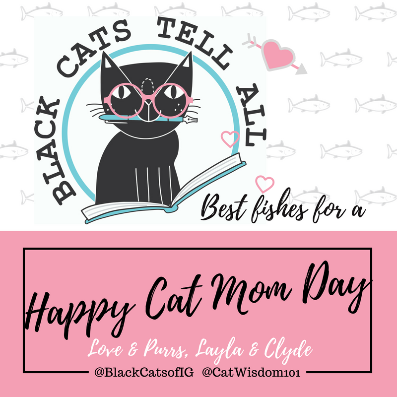 black cat mom day