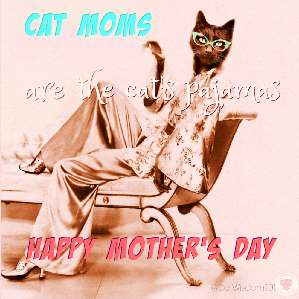 cats_pajamas_mom_mothersDay-e1526200101697 Purrfect Mother's Day For Pet Moms, Cat Rescue Moms, Kitten Foster Moms +