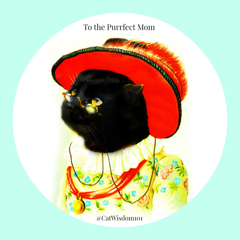 purrfect_cat_mom_mothersday Purrfect Mother's Day For Pet Moms, Cat Rescue Moms, Kitten Foster Moms +