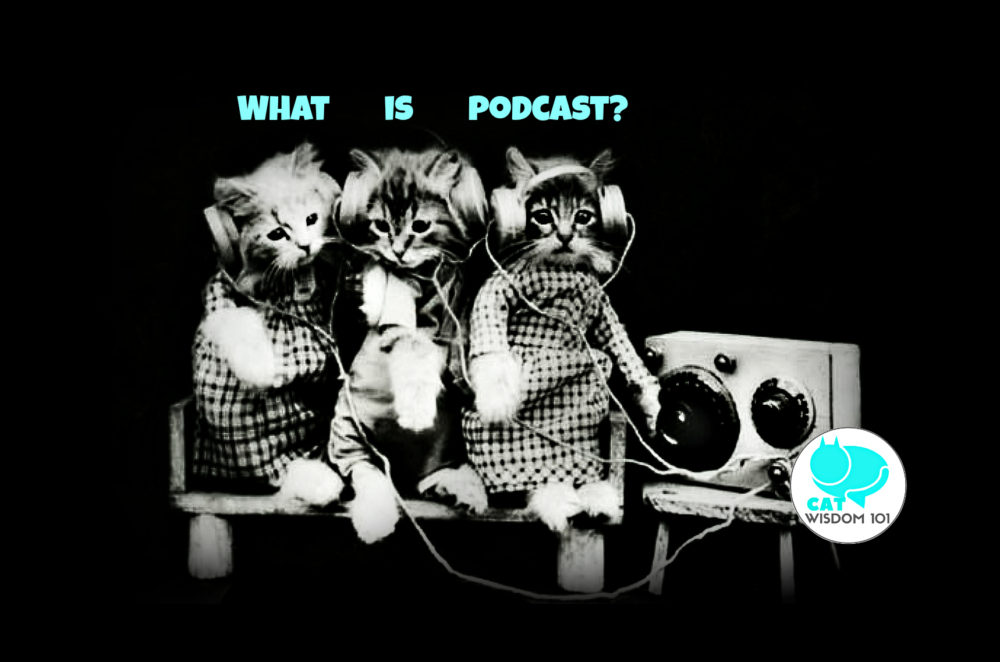 vintage_kittens_podcast