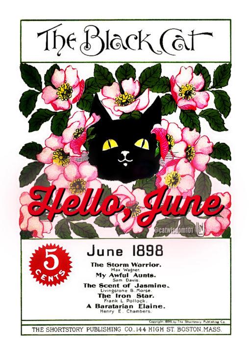 Black Cat magazine 1898-June