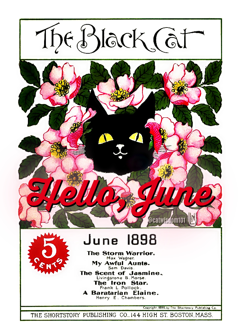 Black Cat magazine 1898-June