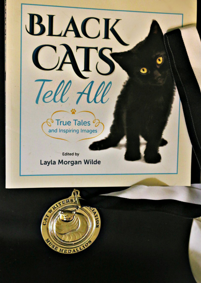 Black_cats_tellall_book_award_Muse_CWA