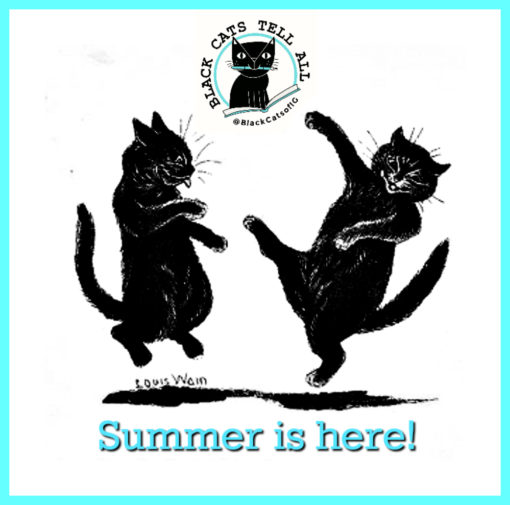 cat_dance_summer