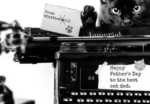 father's day cat Dad with vintage typewriter